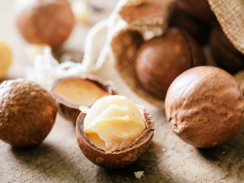 macadamia nut nepal